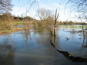 Picture: /blog-files/blog/w288/chalkstream-flood-4.jpg