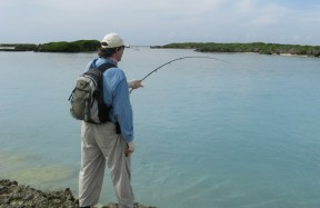 Picture: /blog-files/blog/w288/fishing-astove-channel.jpg