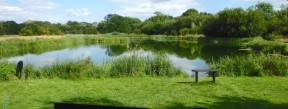 Picture: /blog-files/blog/w288/horsebridge-lake-bossington.jpg