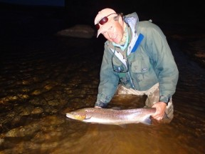 Picture: /blog-files/blog/w288/iceland-night-salmon.jpg