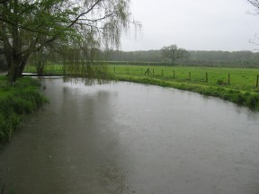 Picture: /blog-files/blog/w288/river-dun-in-the-rain.jpg