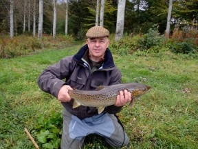Picture: /blog-files/blog/w288/tweed-sea-trout.jpg