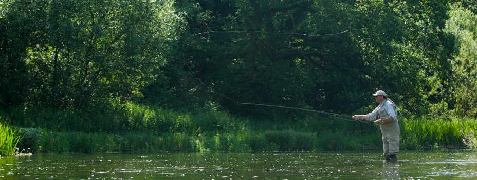 Casting to a chalkstream wild brownie