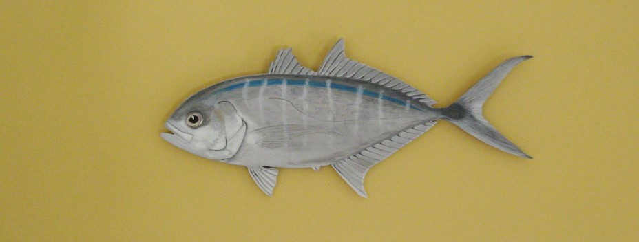 Painted fish for Blue runner fish